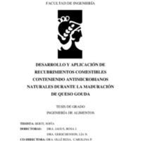 Berti_2017.pdf